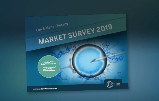 Market Survey Carousel